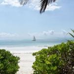 Skrivarkurs på Zanzibar
