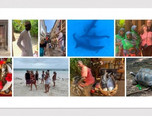 """Zanzibar via Almedalen: """"Mycket mer än bara en resa eller bara en skrivarkurs"""""""