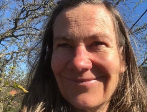 Poesiböckerna Skattgömman och Guld är skrivna av Kerstin Efraimsson